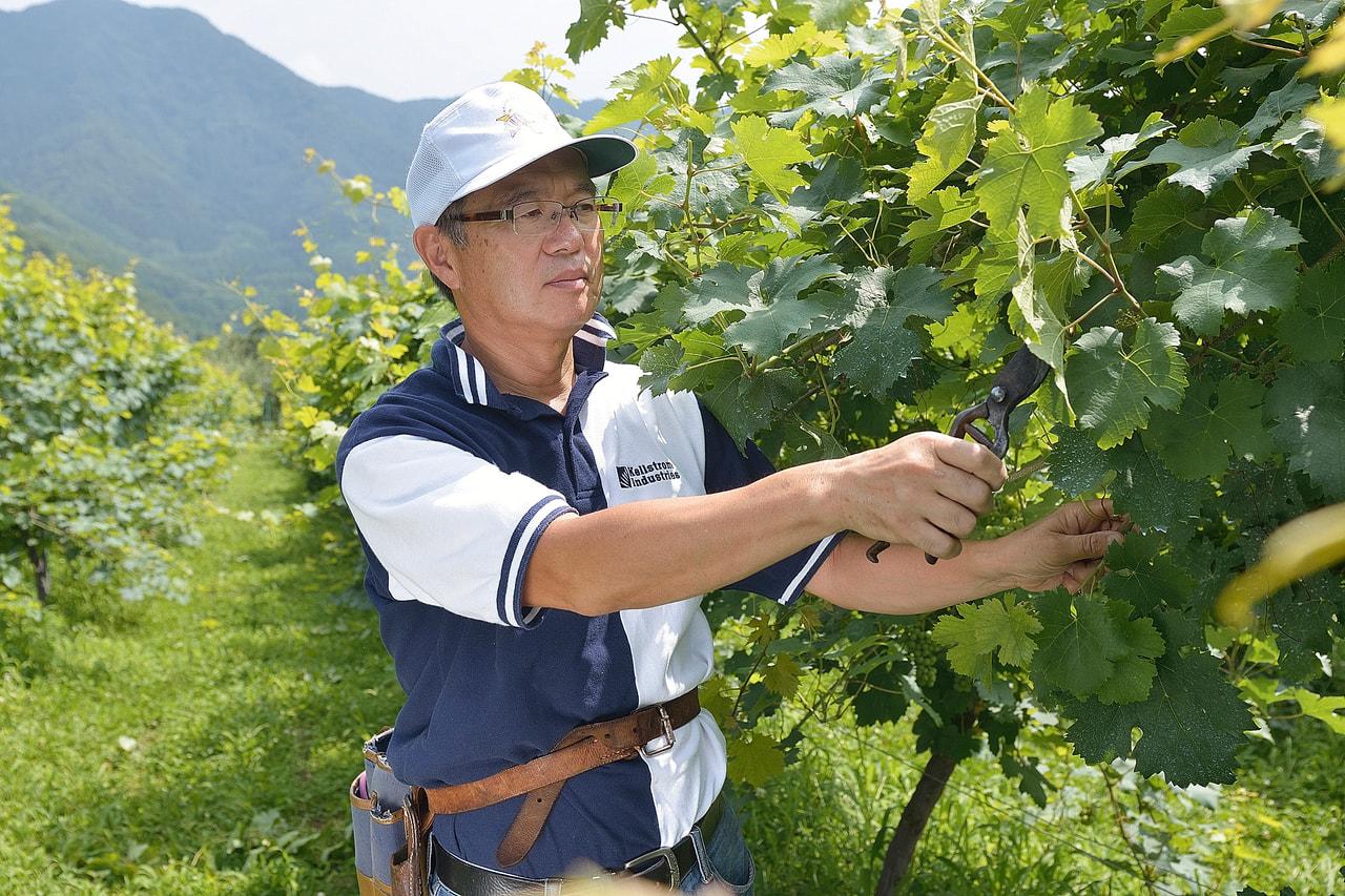 Vol.9 楠わいなりー<br>楠 茂幸さん<br> <br>須坂の風土から生まれる<br>上質でやさしいワイン
