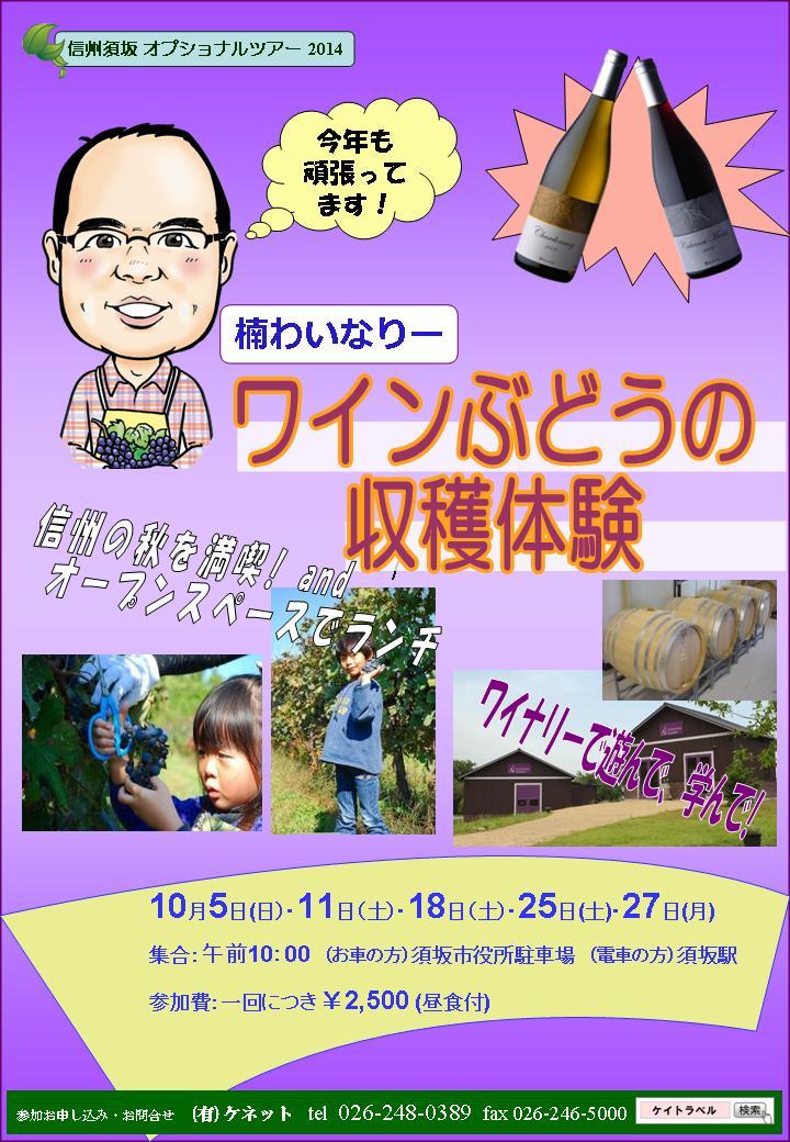 須坂の楠ワイナリーにてぶどうの収穫体験ができます