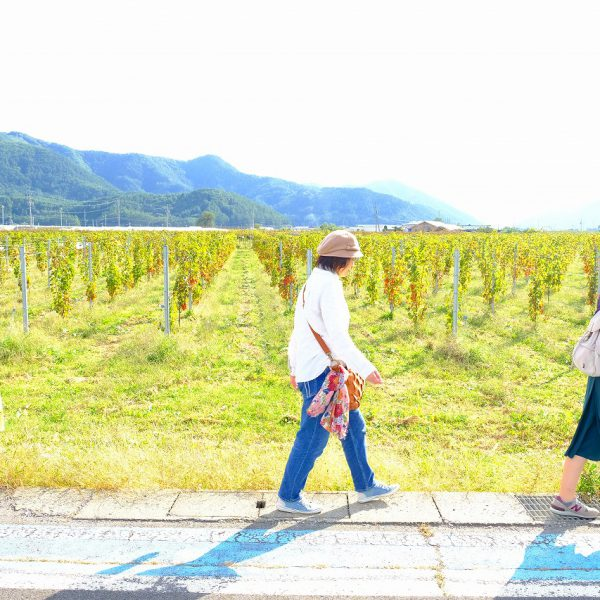 塩尻景観 ワイン散歩  〜秋の桔梗ヶ原ワイナリーめぐり〜(塩尻市)