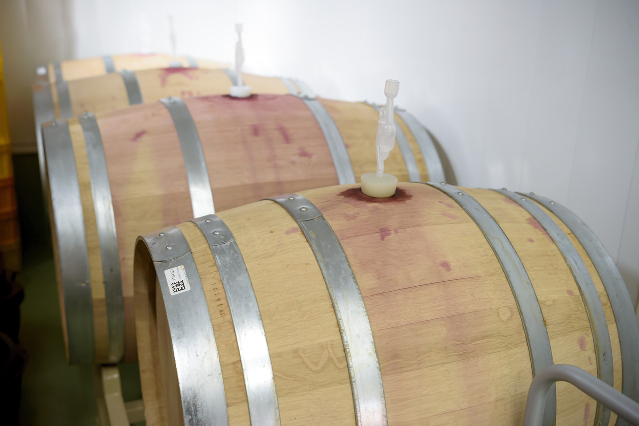 塩尻市がワイン特区に認定されました!