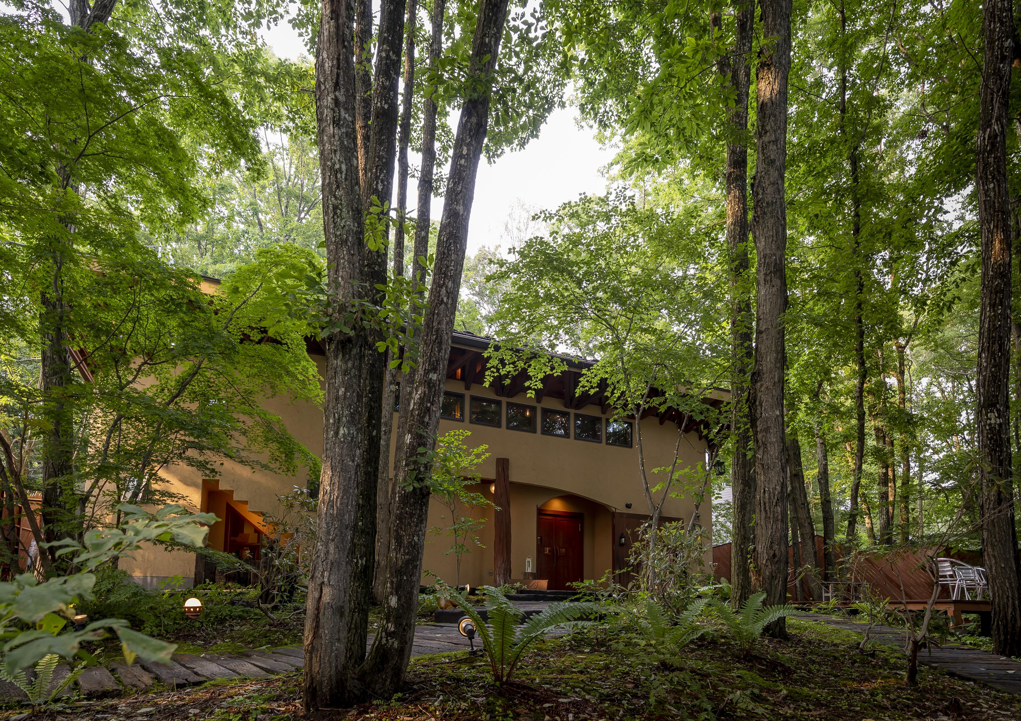 |沢屋直営レストラン こどう|<br>美しい森に抱かれたレストランで<br>NAGANO WINEのペアリングを楽しむ